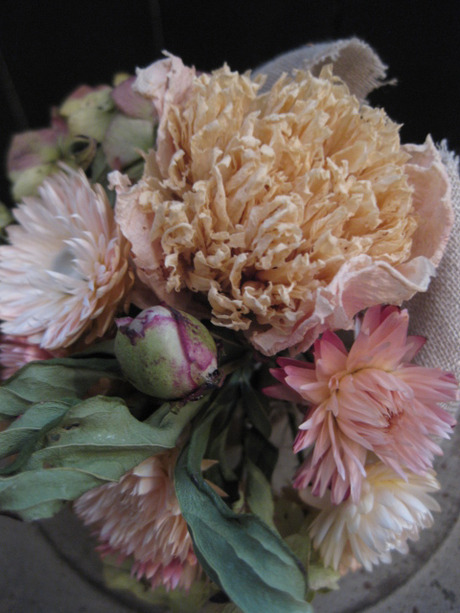 0020120112flower_057