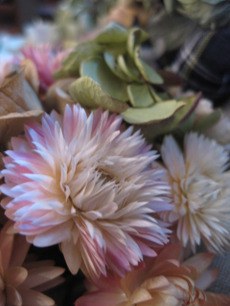 0020120112flower_100